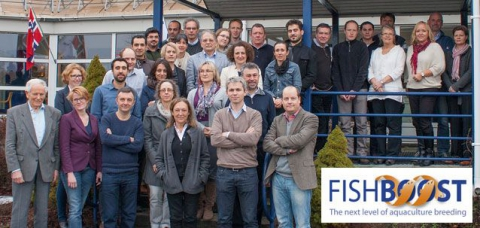 Geneaqua is involved in the European research project FISHBOOST. This project aims to improve the efficiency and profitability of European aquaculture by advancing selective breeding.